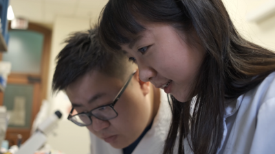Two researchers from Lidan You's lab doing experiments