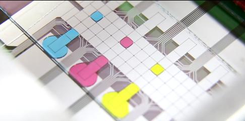 fluorescence micro chip