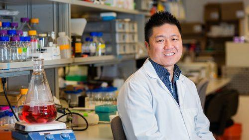Warren Chan in biomedical lab